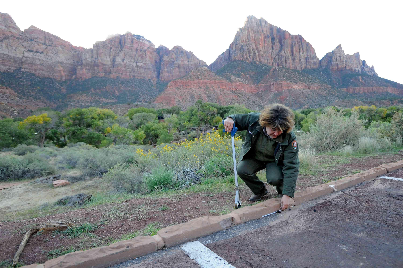 Maintenance worker picks up trash in Zion National Park