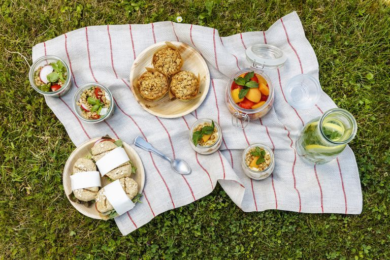 Picnic with vegetarian snacks on meadow