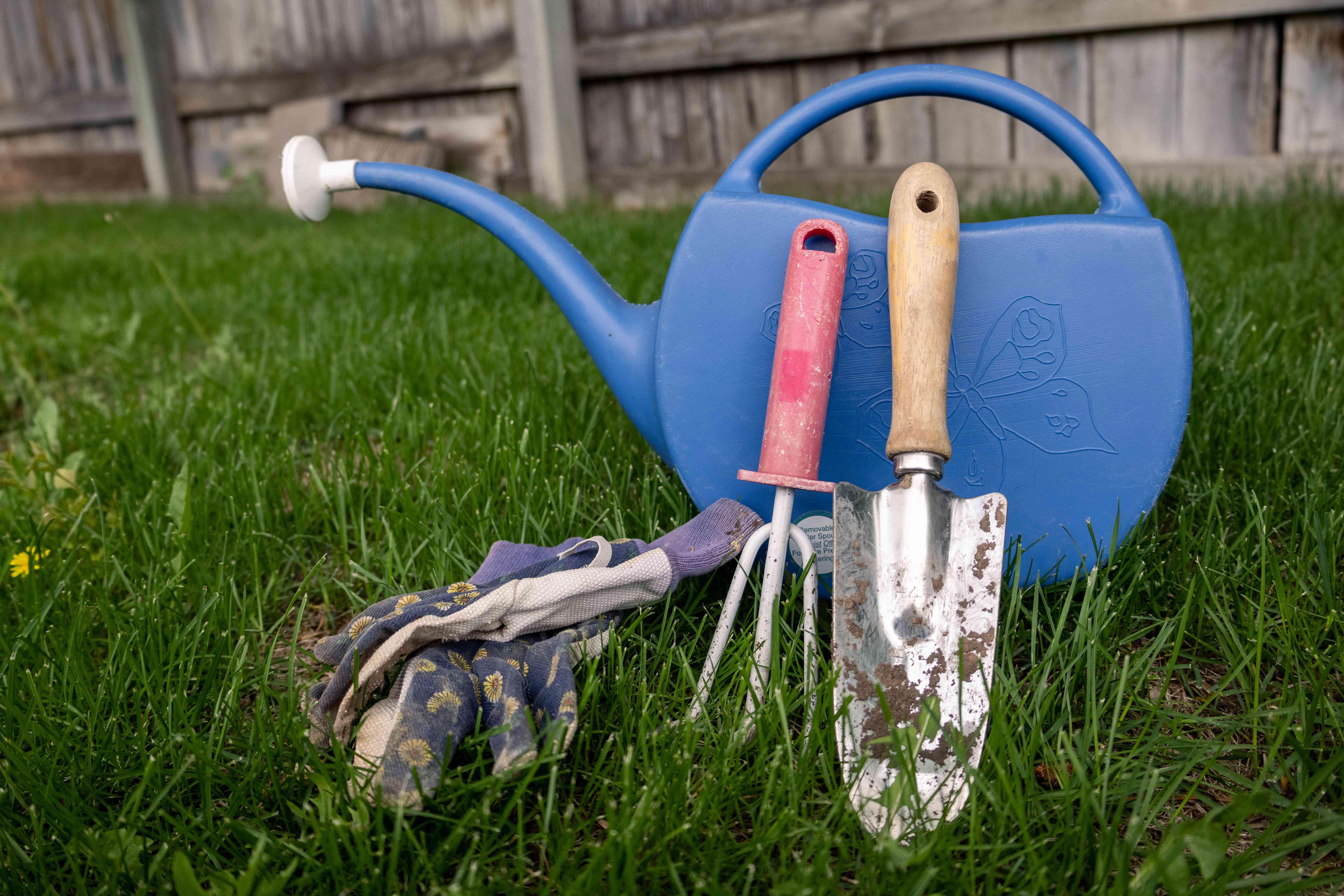 variety of gardening tools in backyard: watering can, gloves, trowel, trough