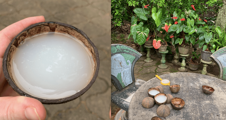 fresh coconut toddy