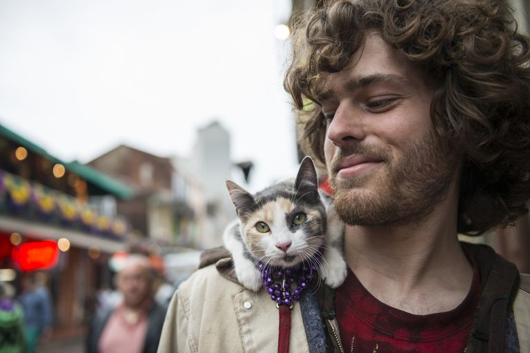 young man with long curly hair glances at young calico cat on shoulder