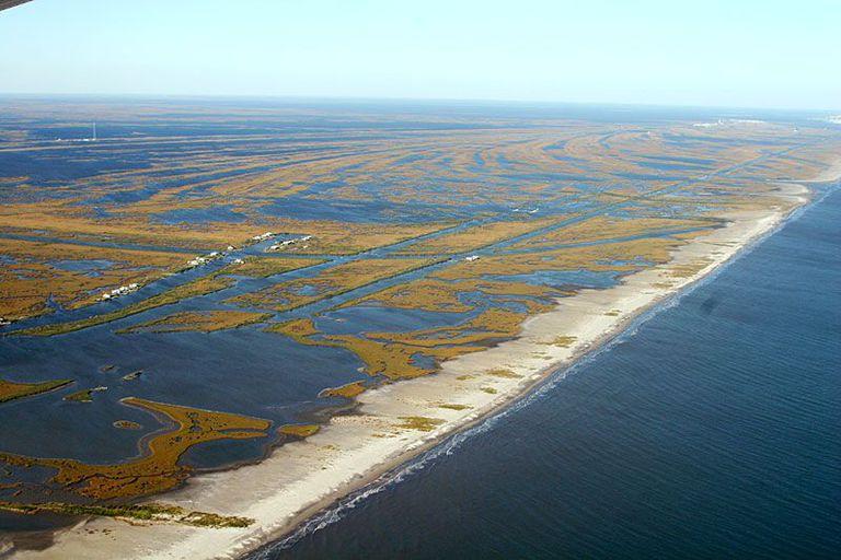 new-orleans-wetlands-disappearing.jpg
