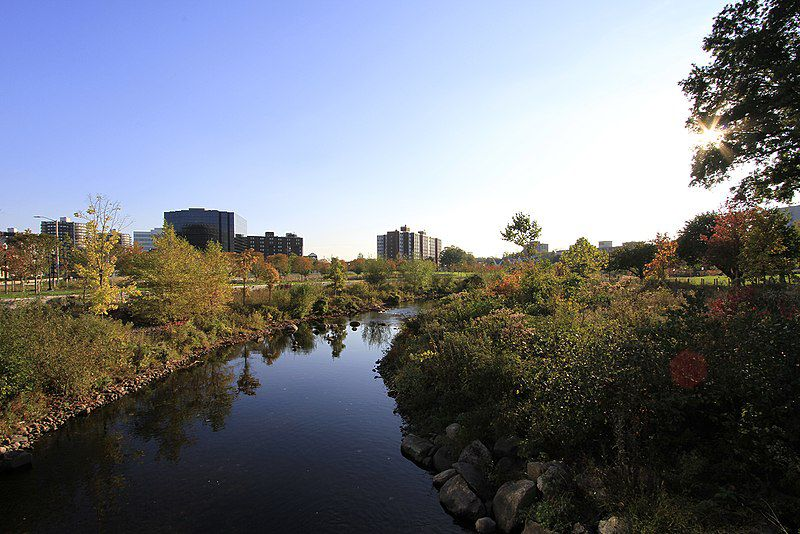 Mill River Park, Stamford, CT