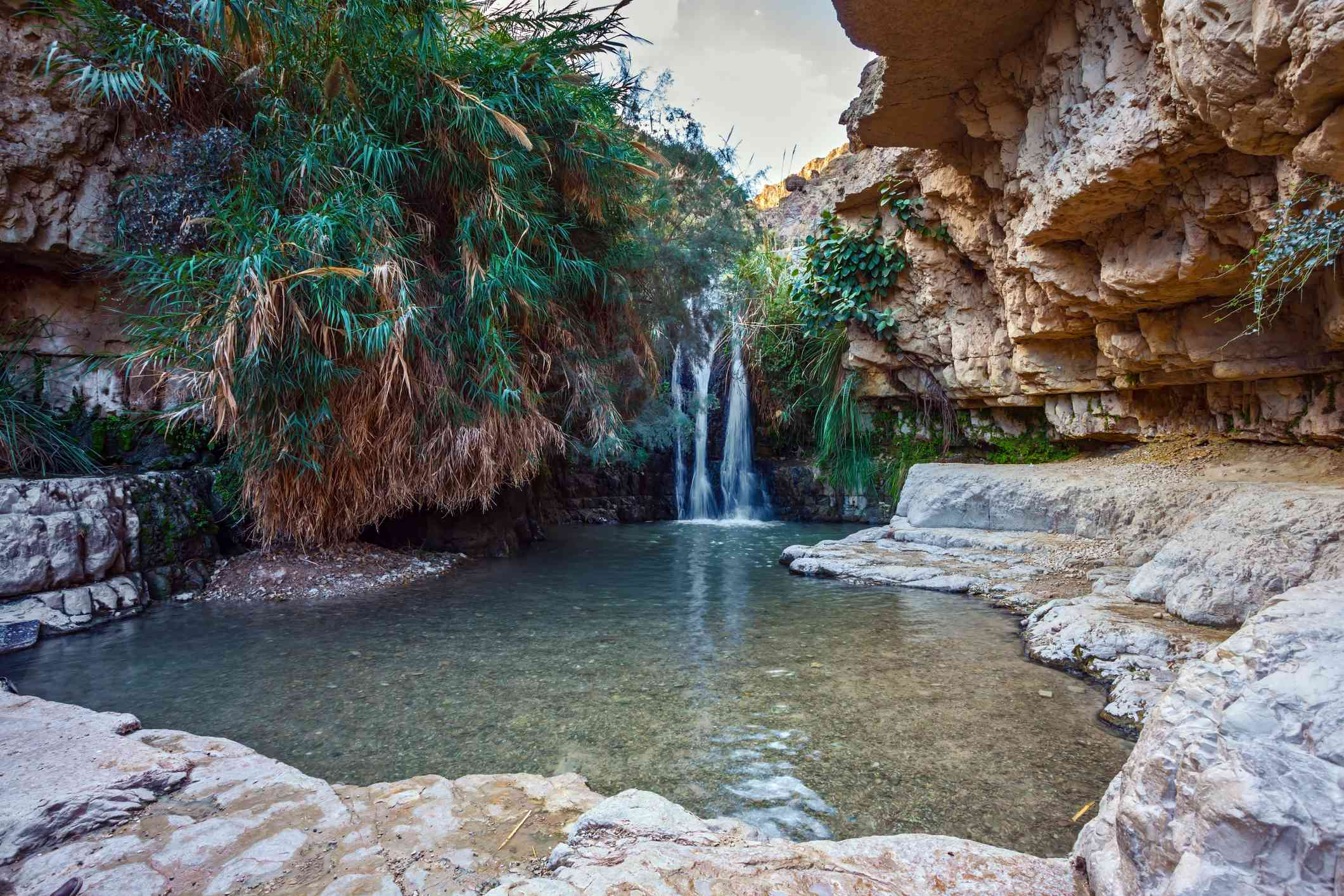 pond with clear water and a waterfall surrounded by rock formations and palm trees located in Ein Gedi national park, Israel