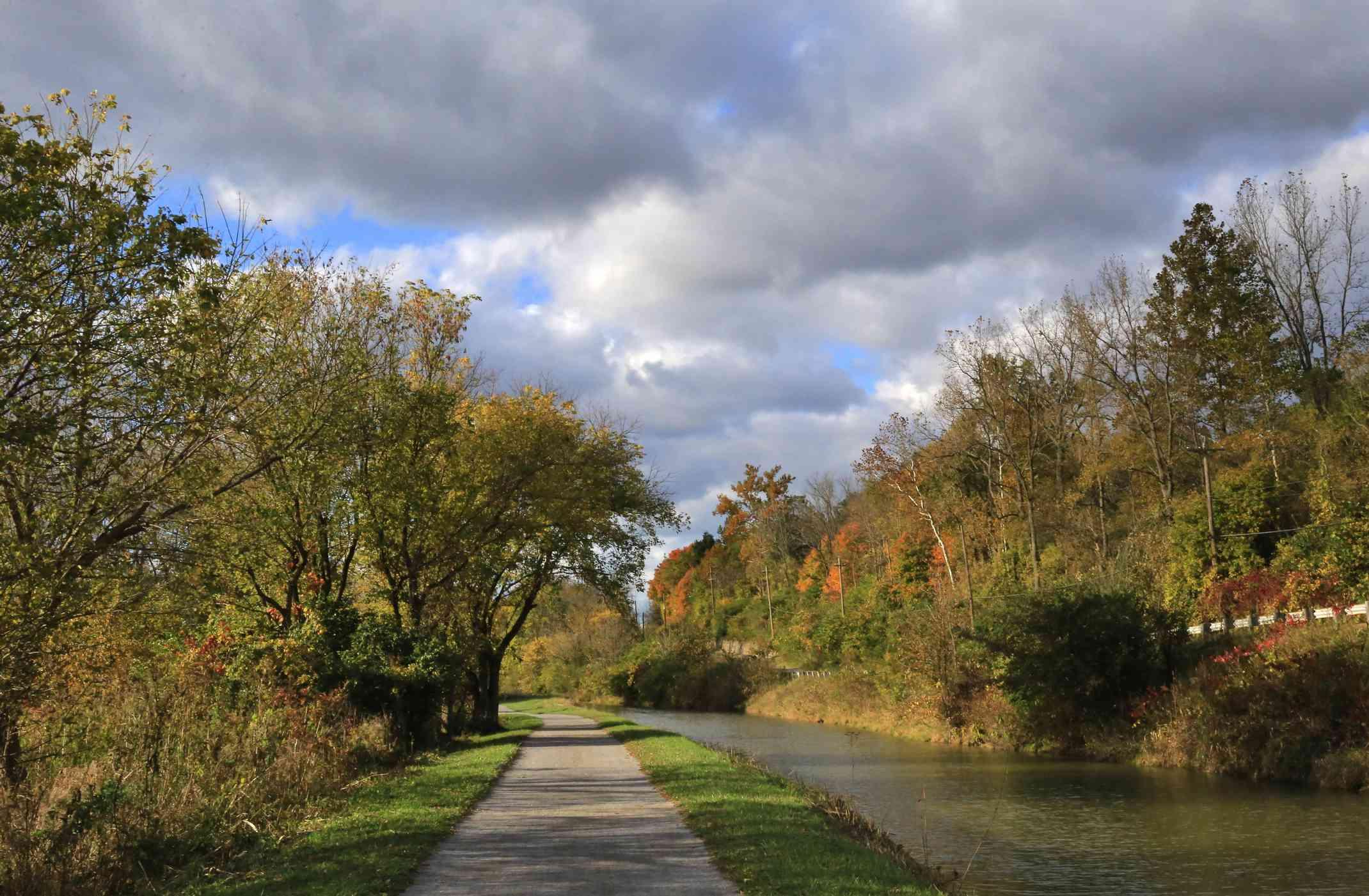 A bike path along a canal in a woodland landscape