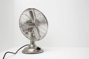 Silver fan