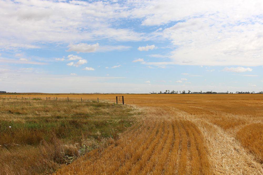 A prairie farm view in Manitoba.