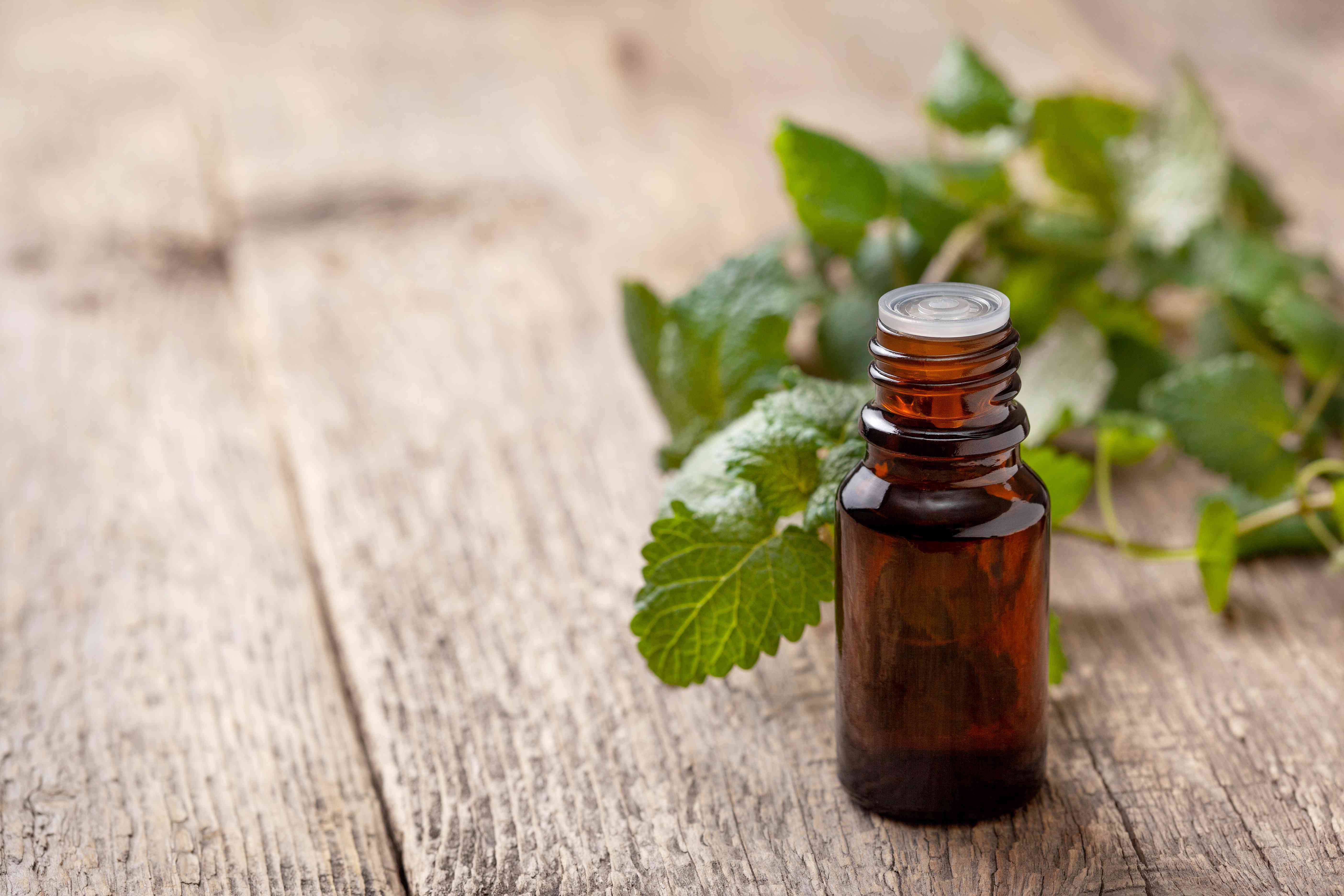 bottle with essential mint oil