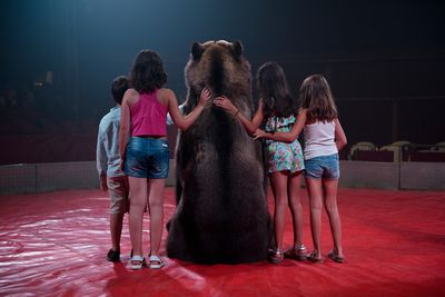 Tima the brown bear of the Gran Circo Holiday circus poses for a photo with children