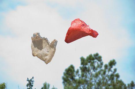 Pregúntale a Pablo: ¿Son las bolsas de plástico mejores después de todo?