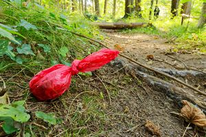 dog poop bag in the woods