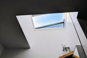 Light coming in from a skylight onto a plant