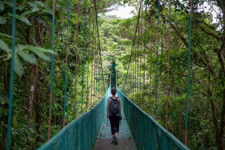 Monteverde Cloud Forest Biological Preserve in Costa Rica