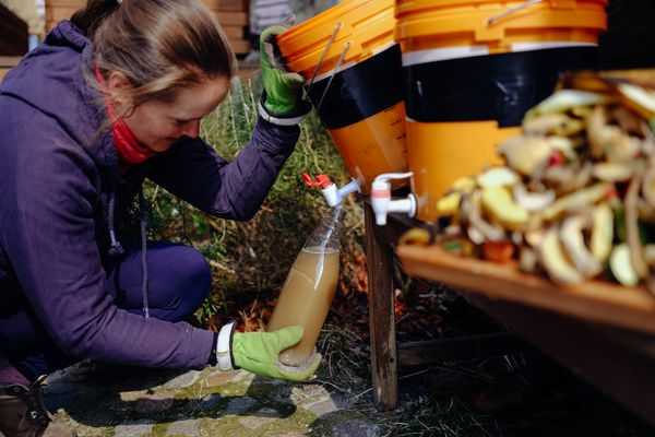 Woman harvesting environmentally friendly fertilizer from bio waste using diy bokashi.