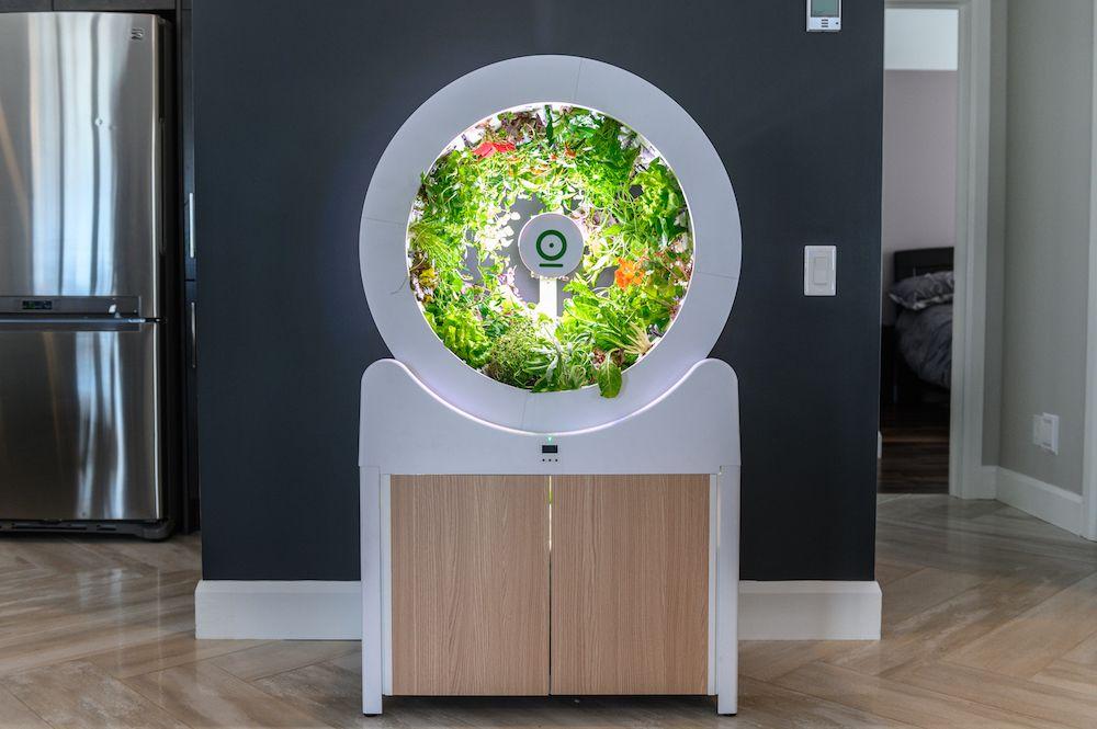 OGarden Smart Grows Fresh Veggies Year-Round in Your House