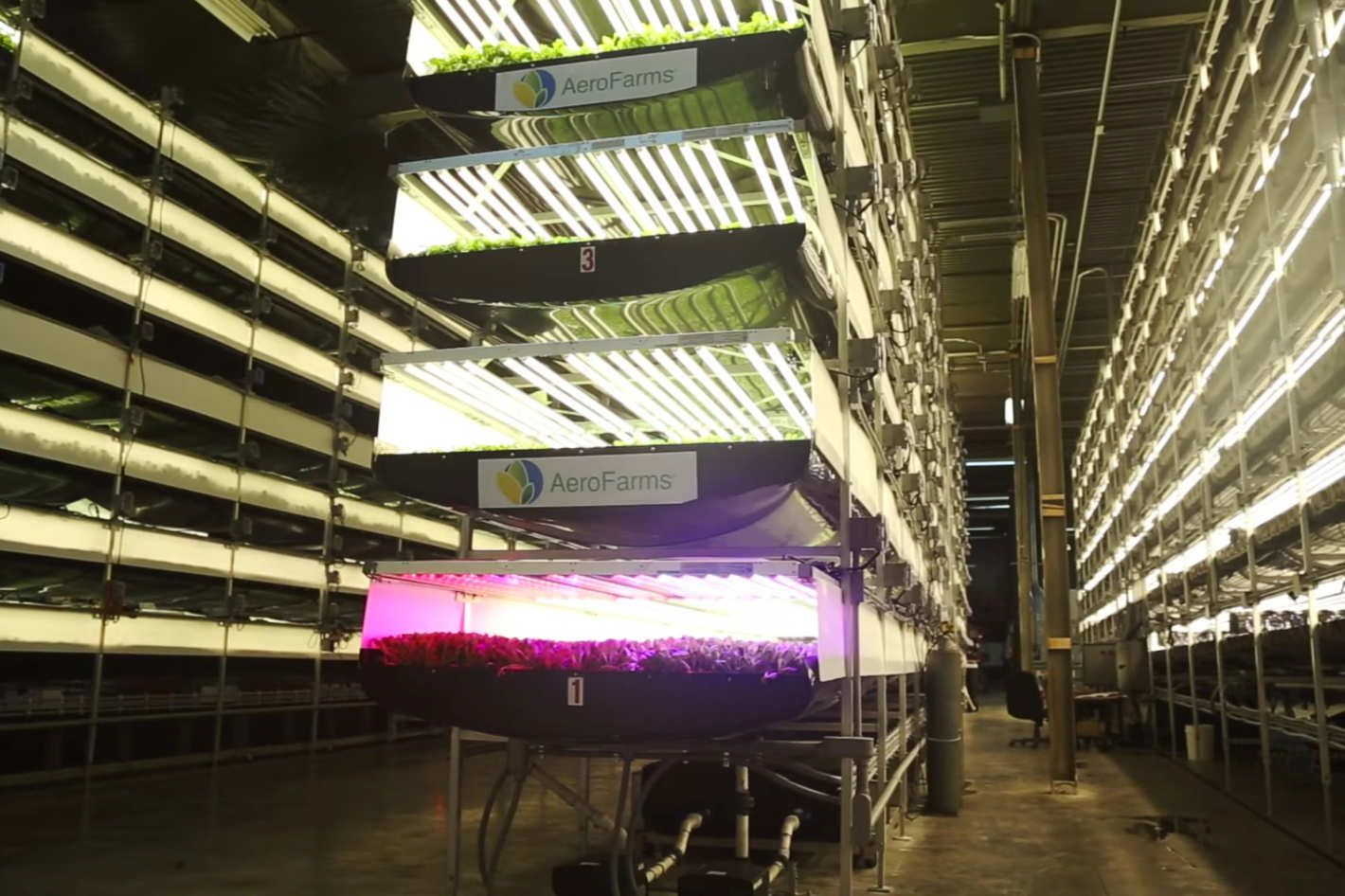 I Was Wrong About Vertical Farms; Aerofarms Shows How to Make Them Really Work.