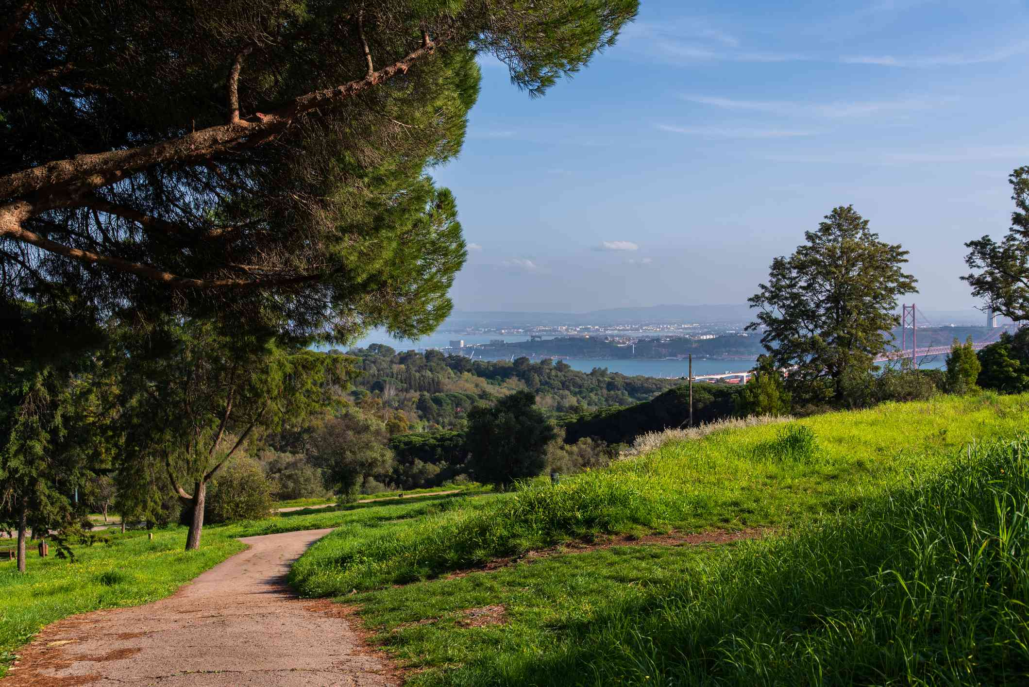A path in Monsanto Park in Lisbon with grassy hills and lush shade trees and a view f the ocean in the distance