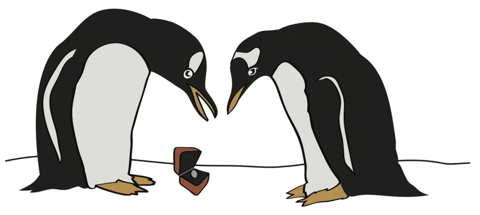 drawing of two penguins