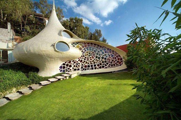 Impresionante hogar es una concha gigante habitable para los humanos (Video)
