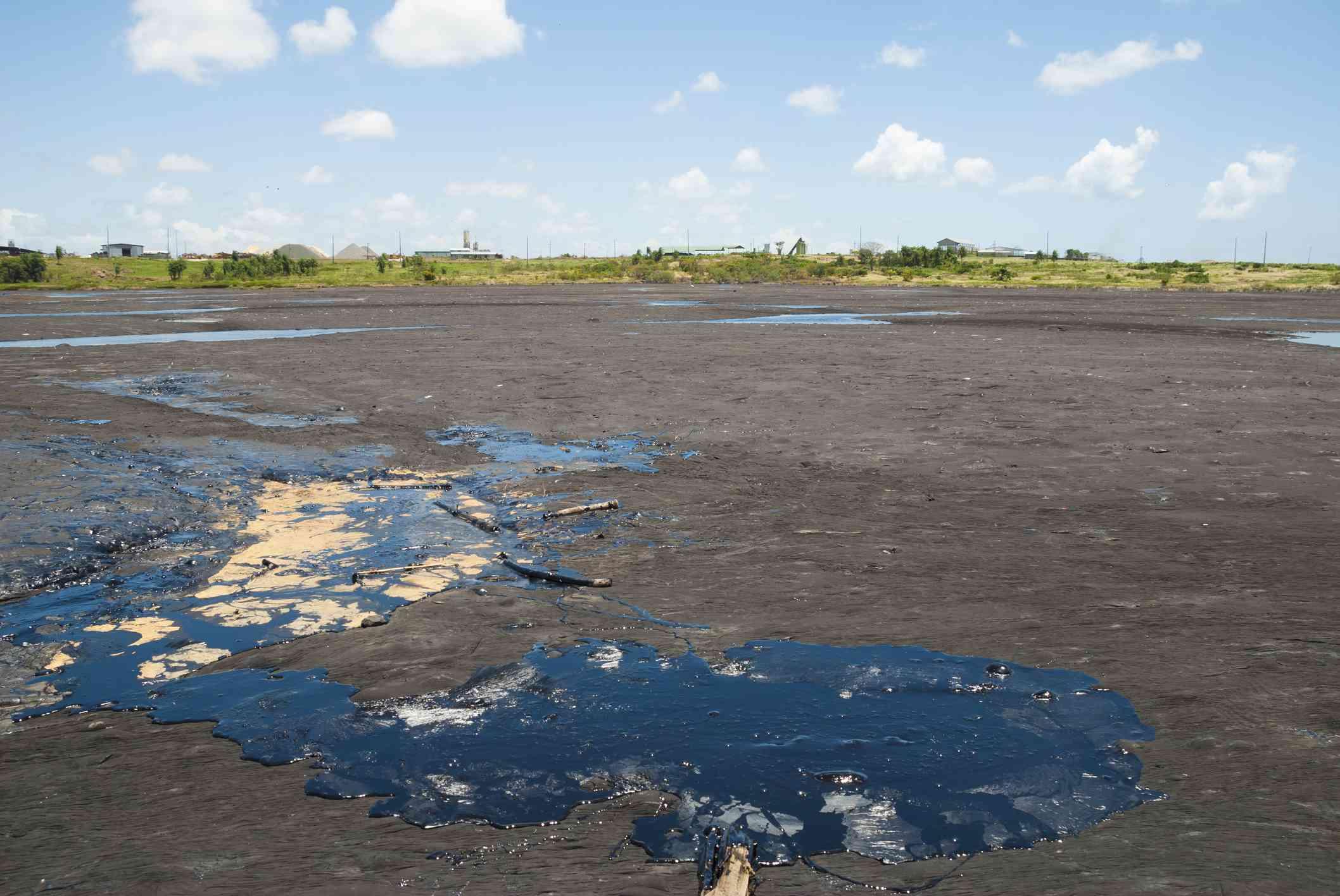 A pool of black tar or asphalt in a dark brown lake bed