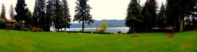 view from Lake Quinault Lodge