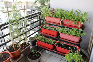 Red containers stacked up growing vegetables in a balcony garden.