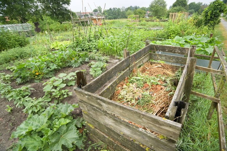 A compost pile in a community garden.