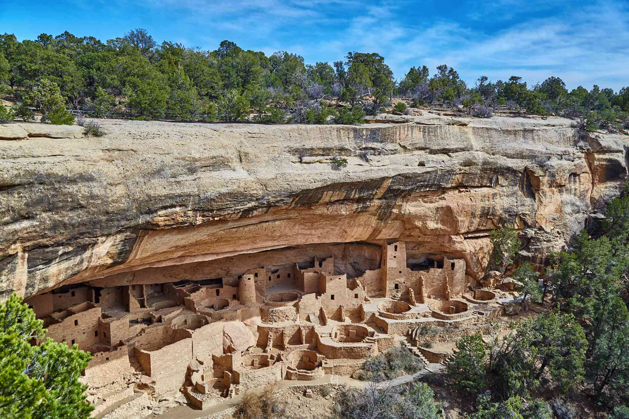 Aerial view of Mesa Verde cliff dwellings beneath a blue sky and tall green trees