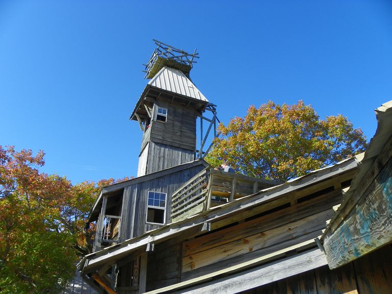 The top of the largest treehouse in the world against a blue sky.