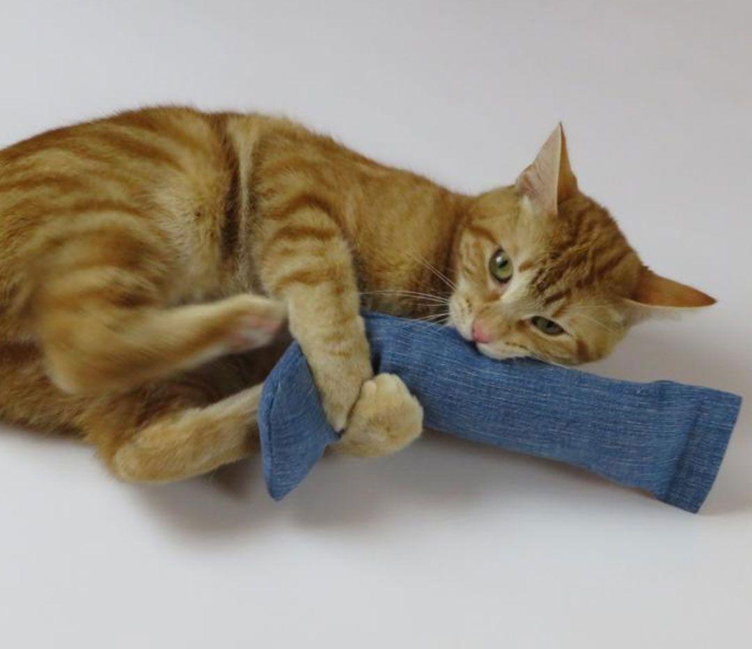 recycled denim cat toy