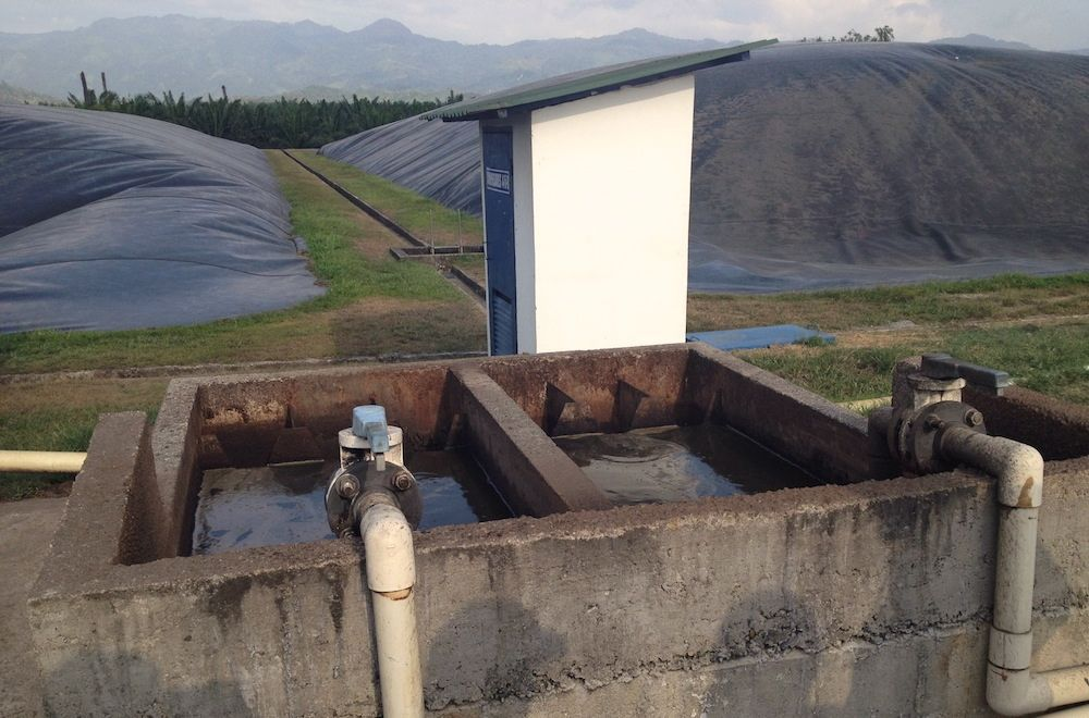wastewater pump at a palm oil processing facility