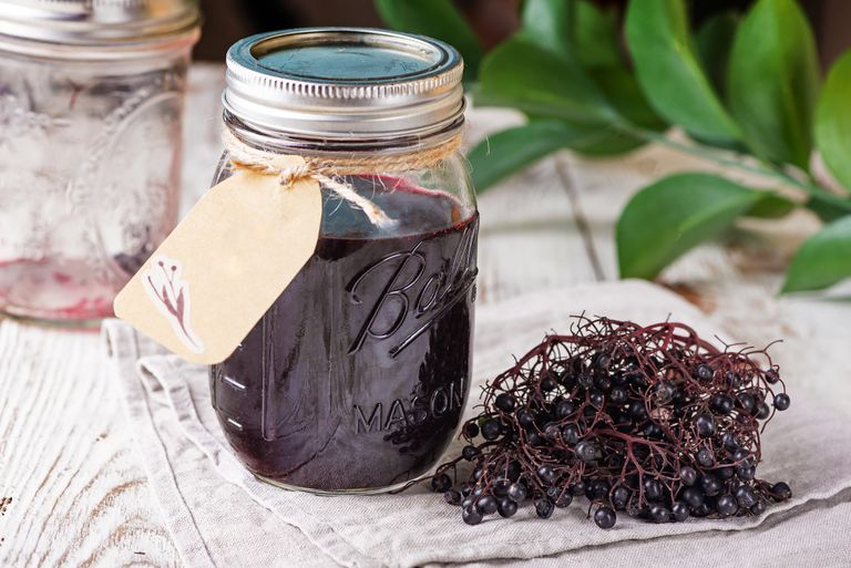 elderberry tincture and berries