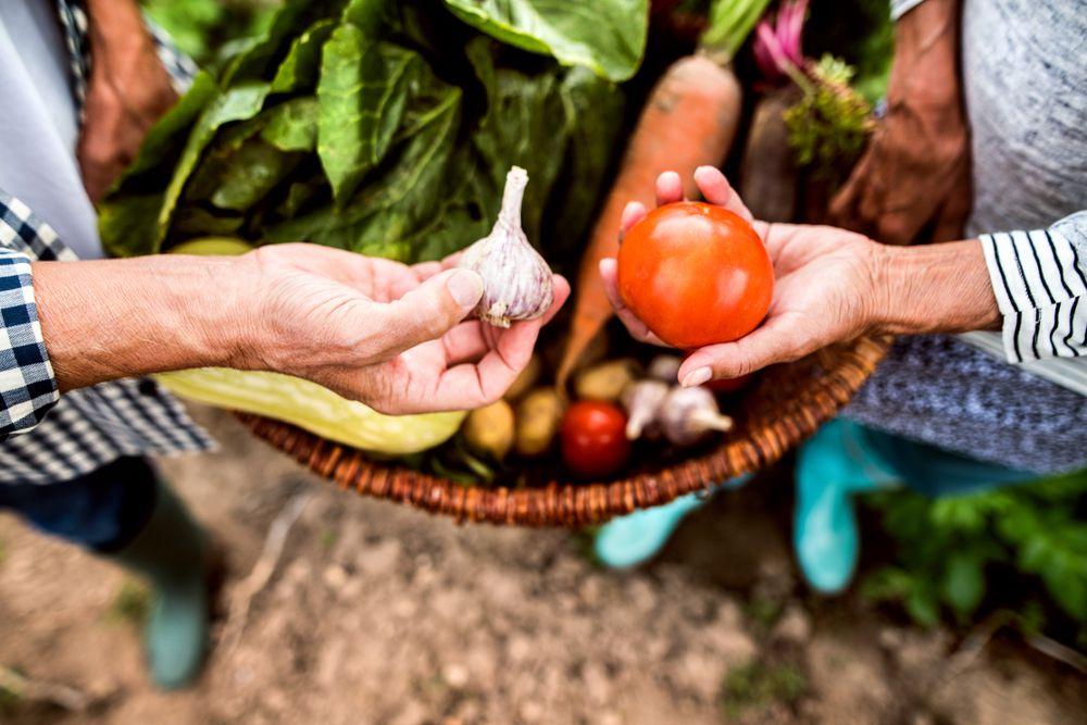 couple sharing garden vegetables