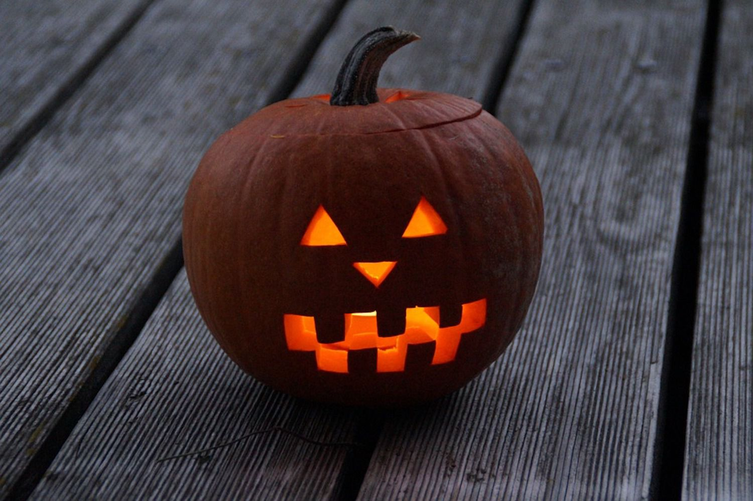 Home Accents 20-inch Light Up Jack-O-Lantern | The Home