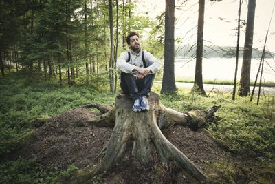 sitting on a tree stump