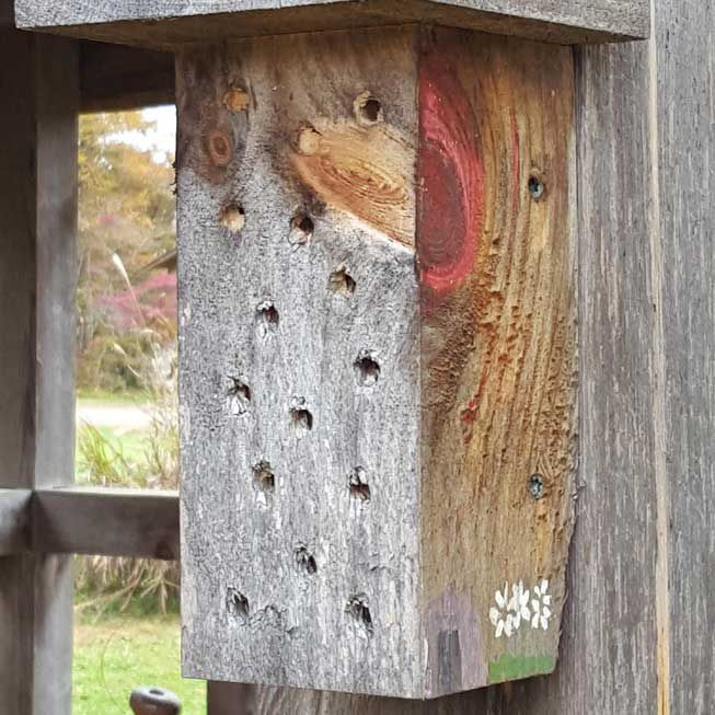 A simple bee hotel
