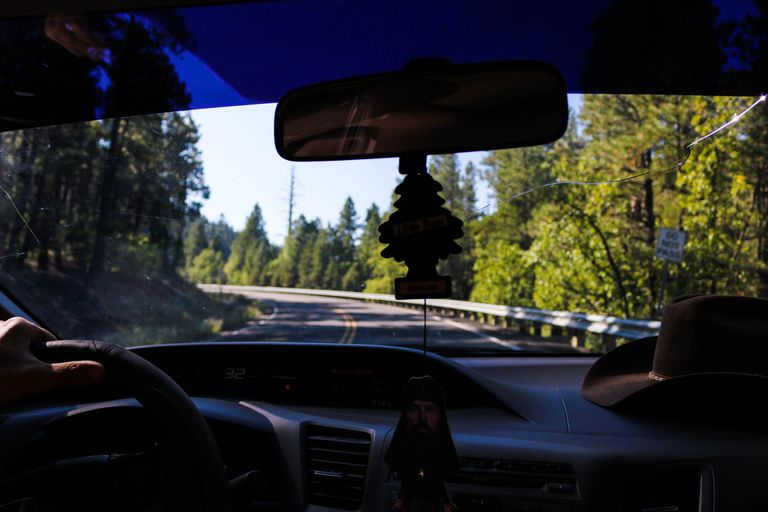 View from inside a car, looking out windshield at roadway and trees