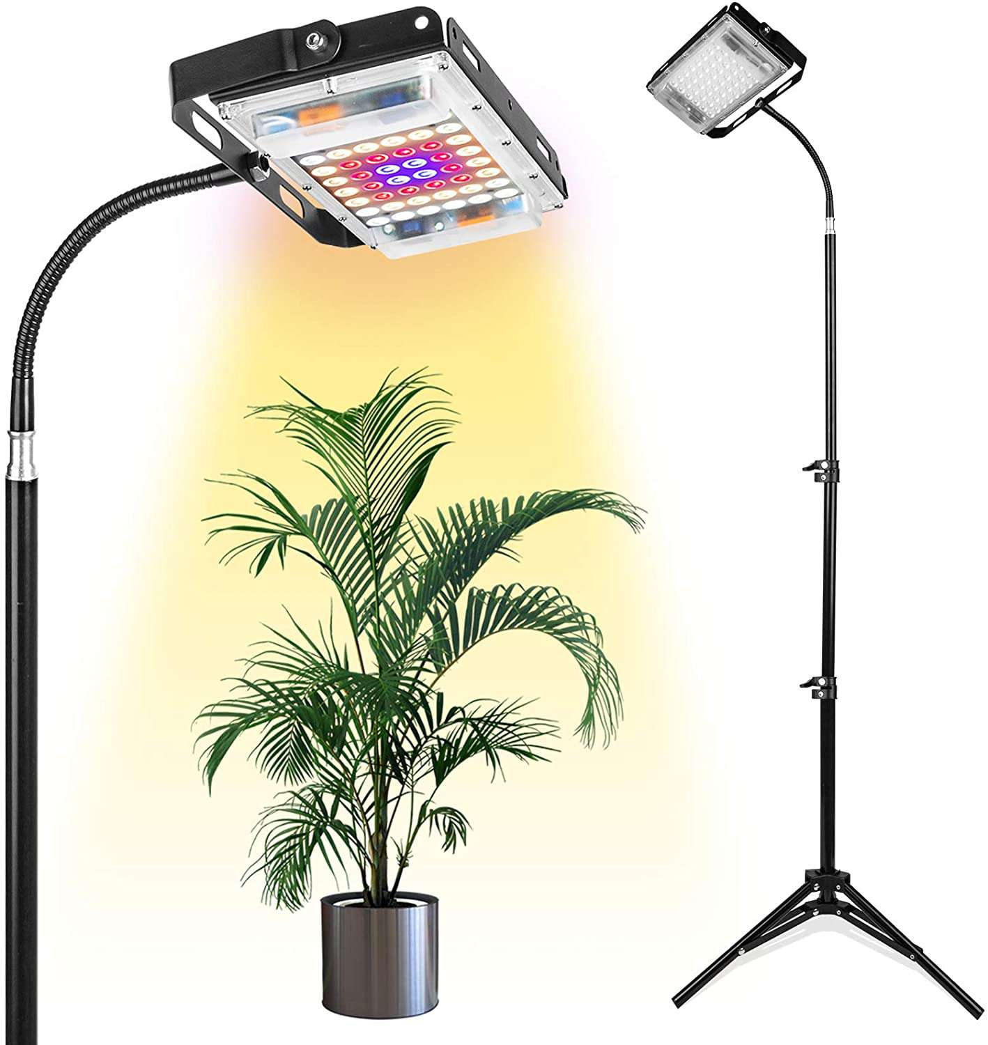 LBW Grow Light With Stand