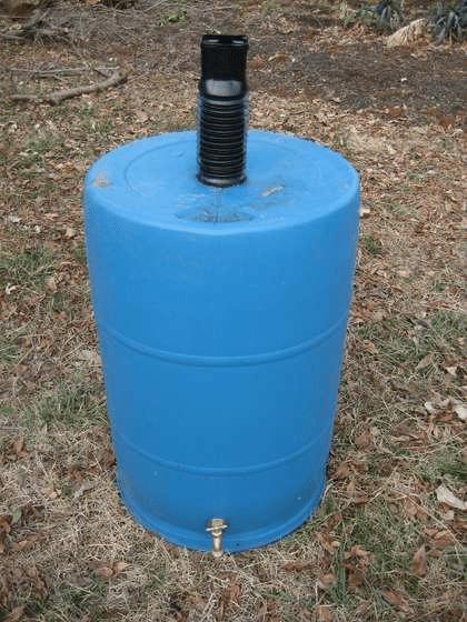 blue barrel converted into a rain barrel