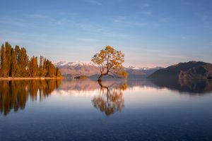 The lonely tree in lake wanaka located in south island of New Zealand, this photo was taken at the lake shore during morning sunrise
