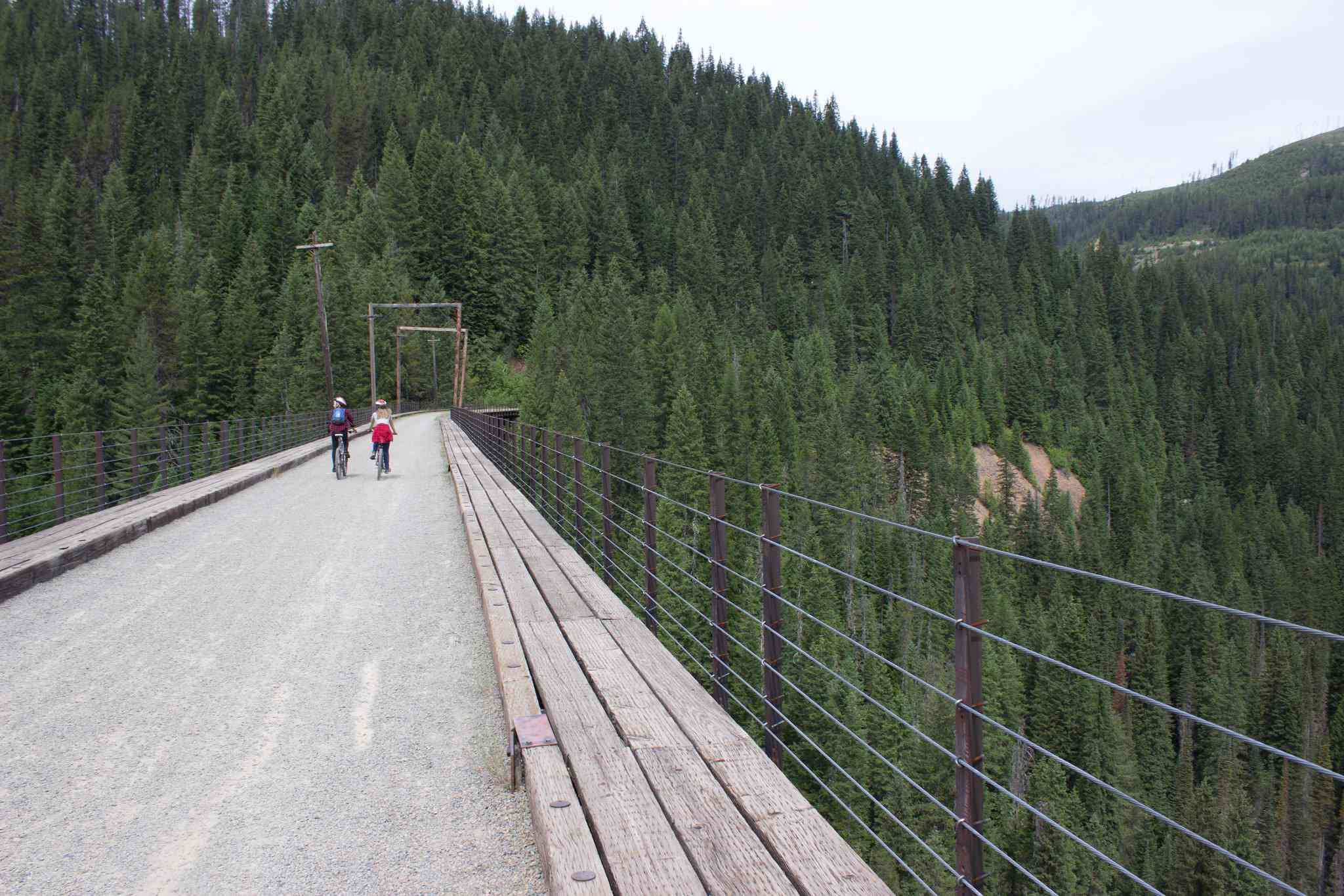 Two people ride their bikes across a high bridge in a pine forest