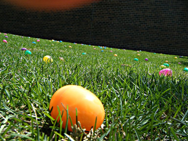 Dyed eggs on the grass