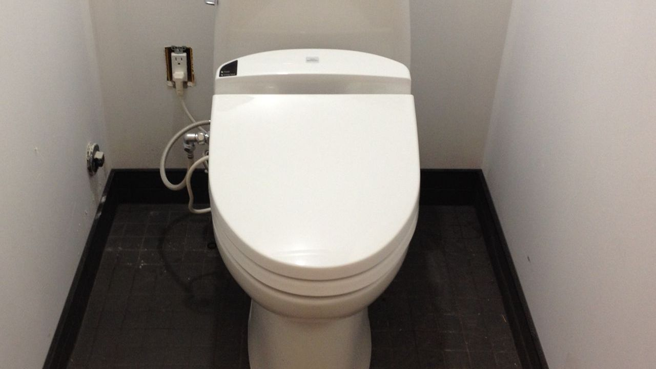 Why I Spent 1200 On A Toilet Seat And Why You Should Too