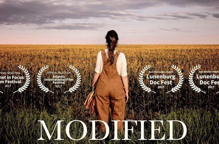 'Modified' Pregunta por qué Canadá y EE. UU. se niegan a etiquetar los alimentos modificados genéticamente