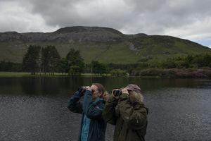 birders in Scotland