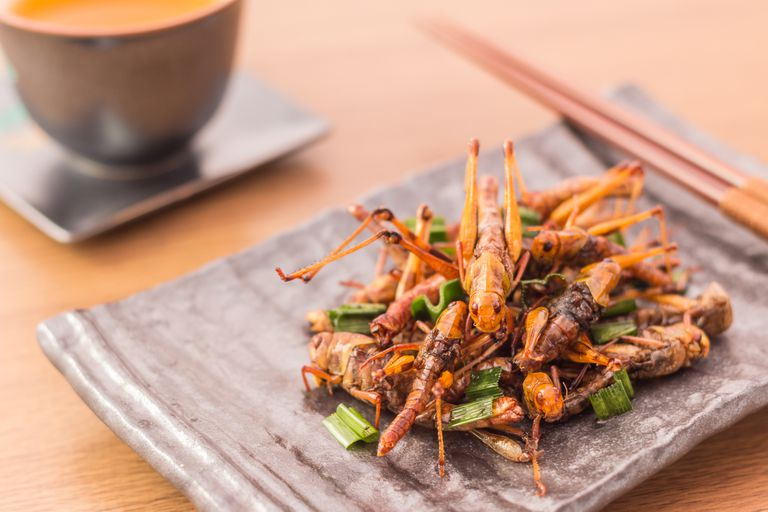 Plate of fried grasshoppers with a pair of chopsticks