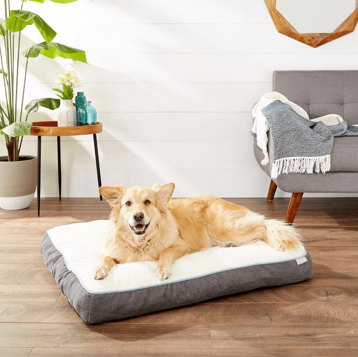 Frisco Dog Bed