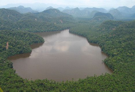 peru amazon forest lake photo