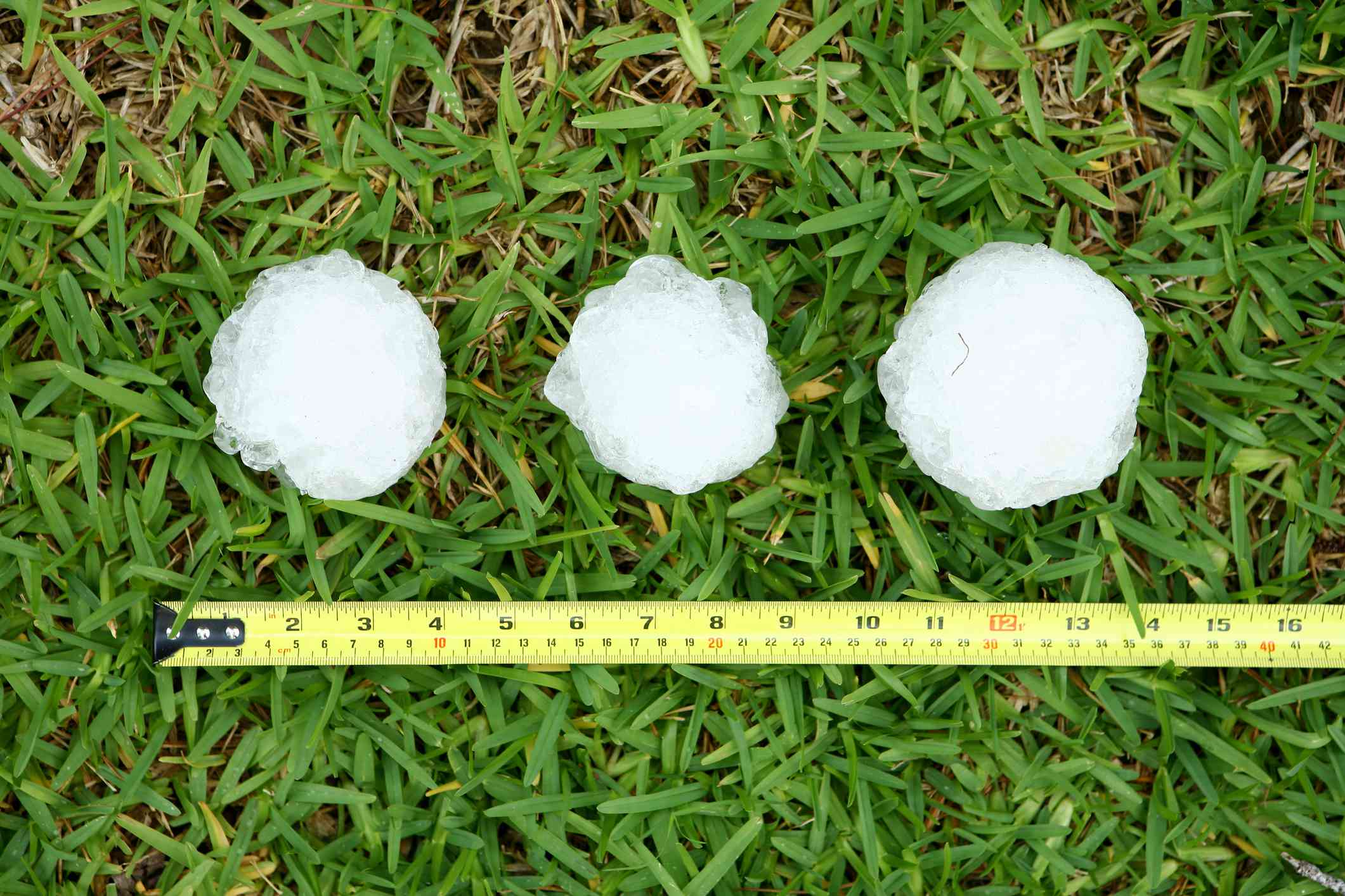 Three hailstones lie in the grass next to a ruler.