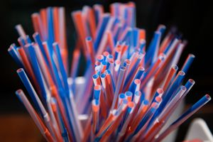 bunch of colorful plastic straws